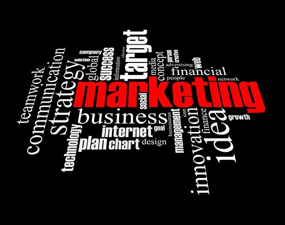 Marketing - Título propio