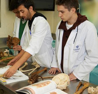 Laboratorio de Disecciones Anatómicas