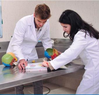 Laboratorio de Fisiología